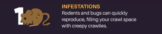 Infestations from rodents and bugs