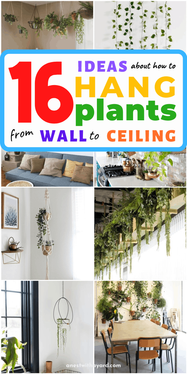 16 Ideas About How to Hang Plants From Ceiling and Wall #ceiling #indoorGardenIdeas #indoorgardendesigns #indoorgardenapartment #apartmentindoorgarden #apartmentgardening #plants