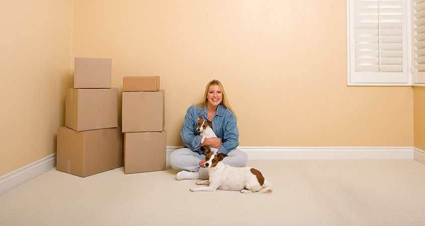 27 Awesome Tested Tips For Your Moving Day: Prepare the pets