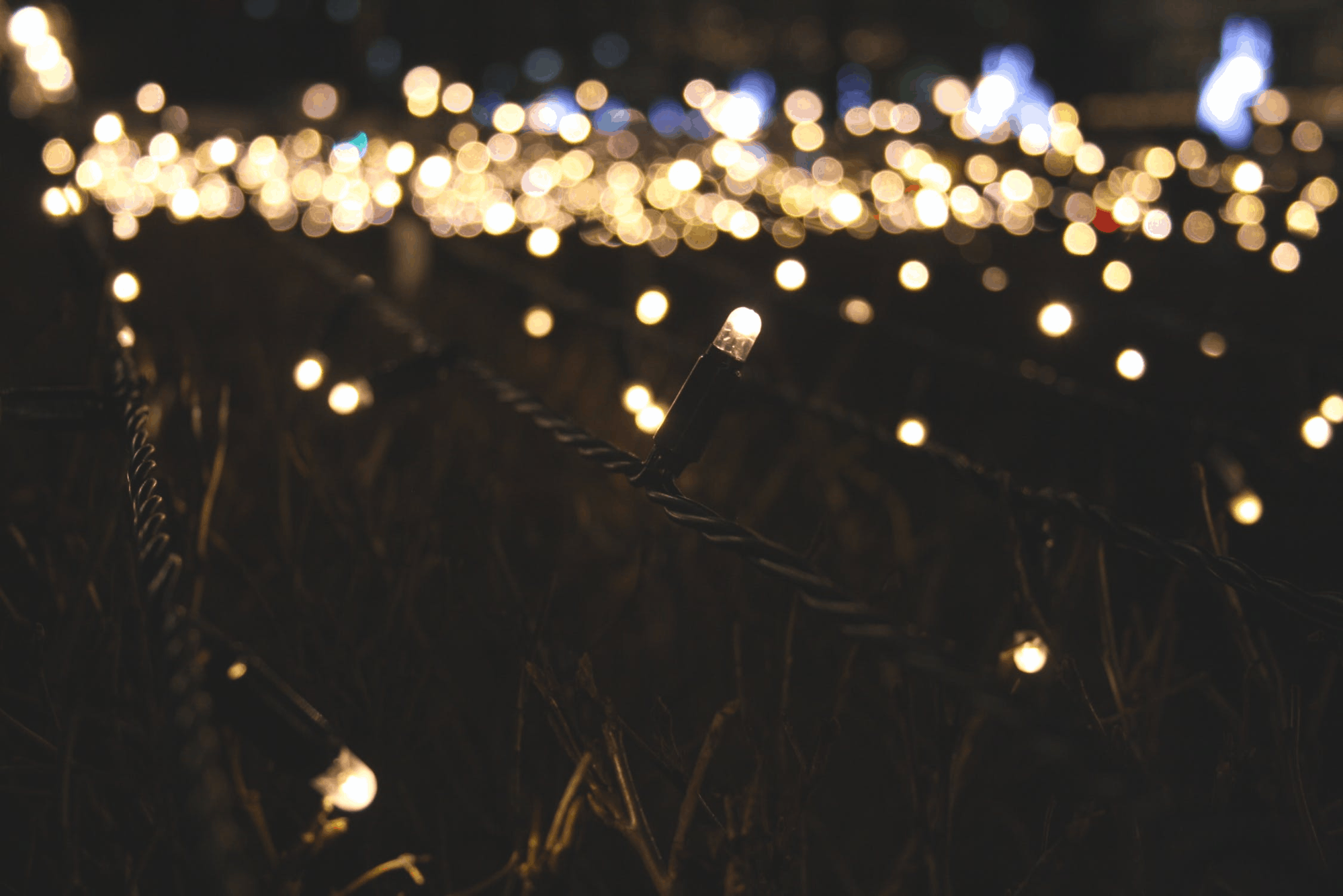 9 Of The Best Ways To Light Up your Backyard: Christmas Lights