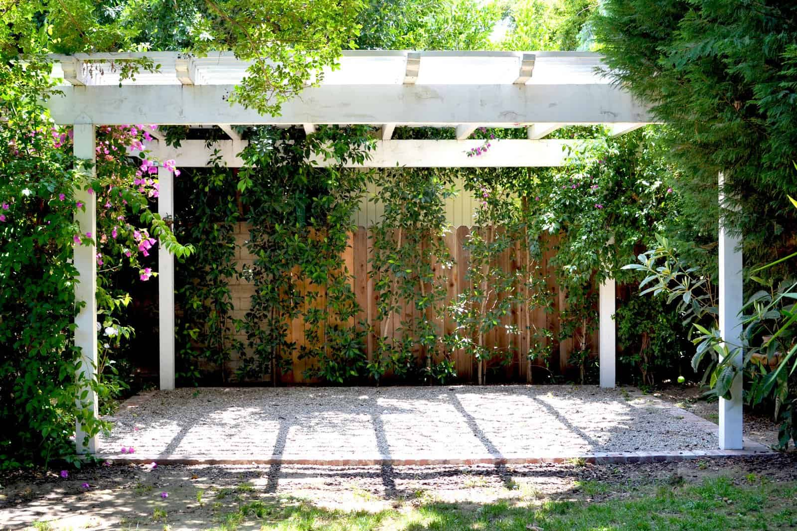 What is the purpose of a Pergola - White pergola- with geenery