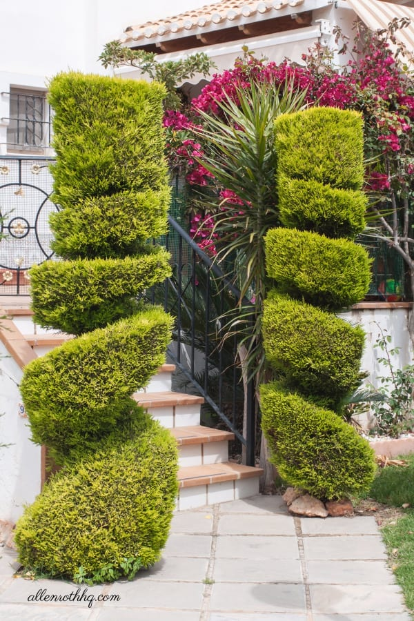 Curb appeal: Plant trees near the entrance #tree #landscaping #backyardLandscape #curbAppealProjects #curbAppeal #garden #entrance