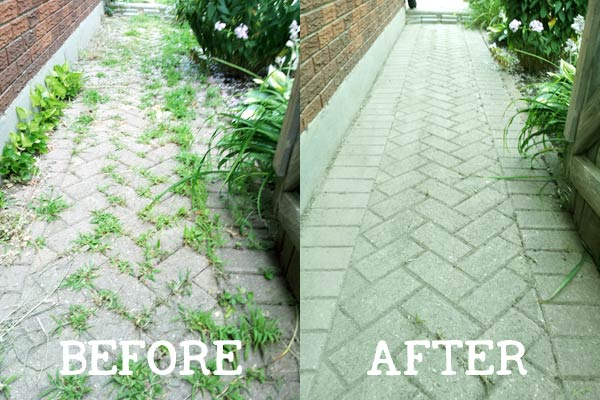 Curb appeal tip: Clean your pathways from weeds #walkway #brickWalkway #beforeafter #curbAppealProjects #curbAppeal #houseExterior #homeExterior
