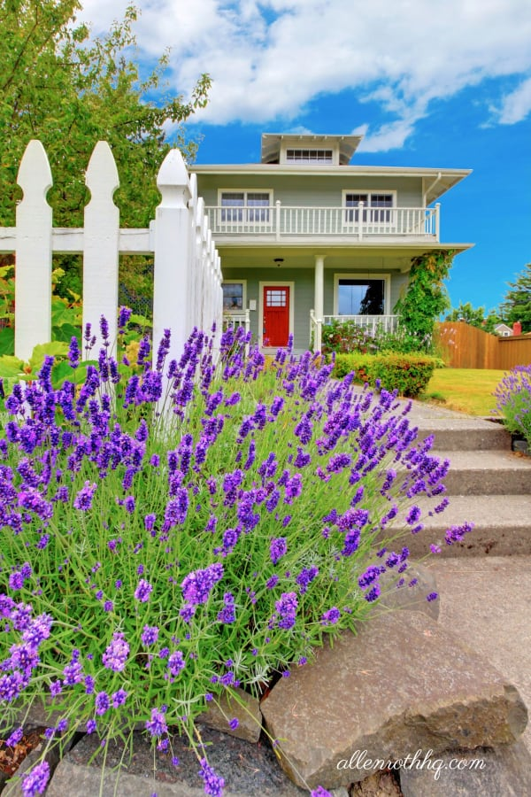 Curb appeal: A flower bed next to a fence near a walkway