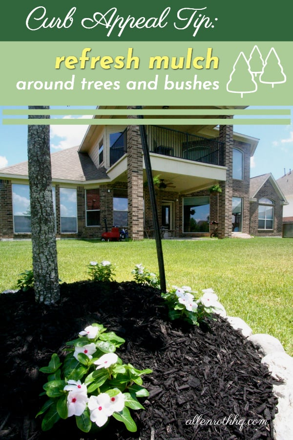 Curb appeal tip: Add mulch around trees #tree #mulch #curbAppealProjects #curbAppeal #houseExterior #homeExterior #homeExteriorIdeas #gardening #landscaping #backyard