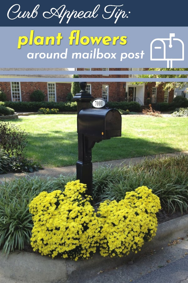 Curb appeal tip: Plant flowers around your mailbox post #flowerBed #mailBox #curbAppealProjects #curbAppeal #houseExterior #homeExterior #homeExteriorIdeas