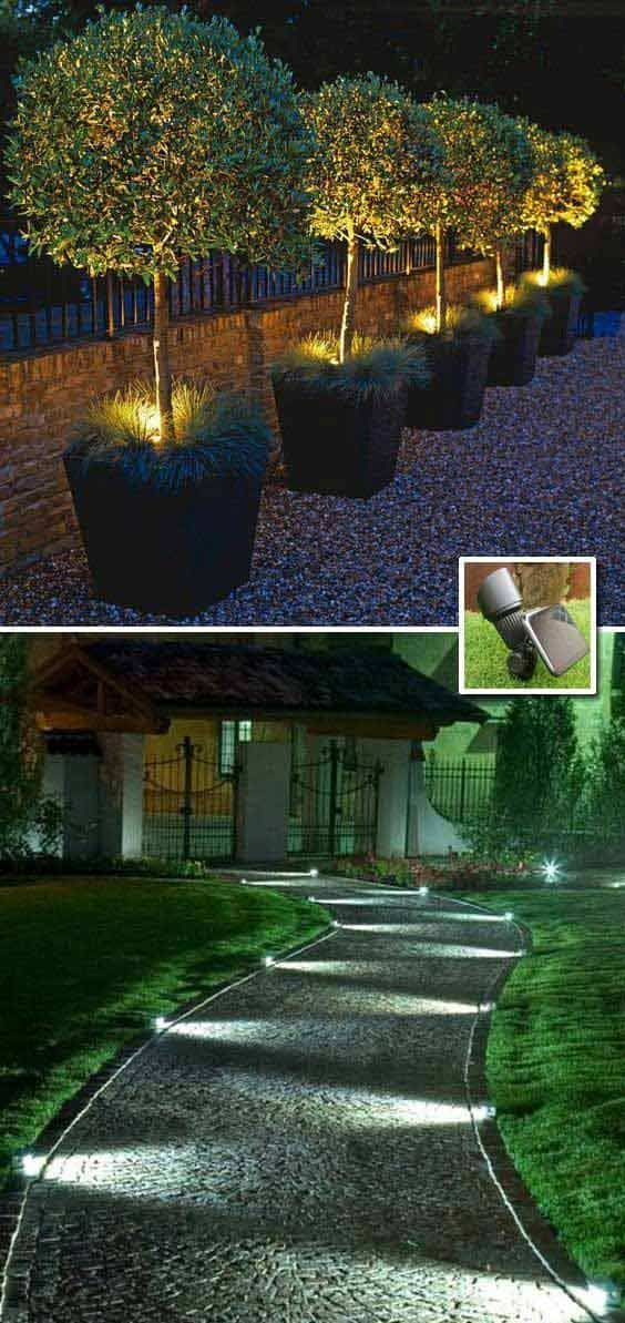 Outdoor solar lights in the backyard #solarlights #backyardLighting #outdoorLights #OutdoorLighting #backyardLandscaping #backyardLandscapingIdeas #landscaping #backyard #cheapLandscapingIdeas