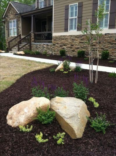 mulch has provided the perfect platform for shrubs, trees, and rocks