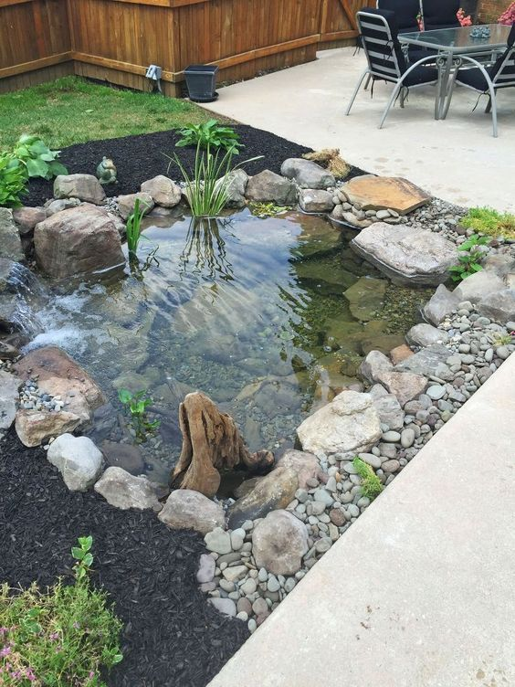 Landscaping ideas with mulch and rocks:rocks and mulch around the fish pond