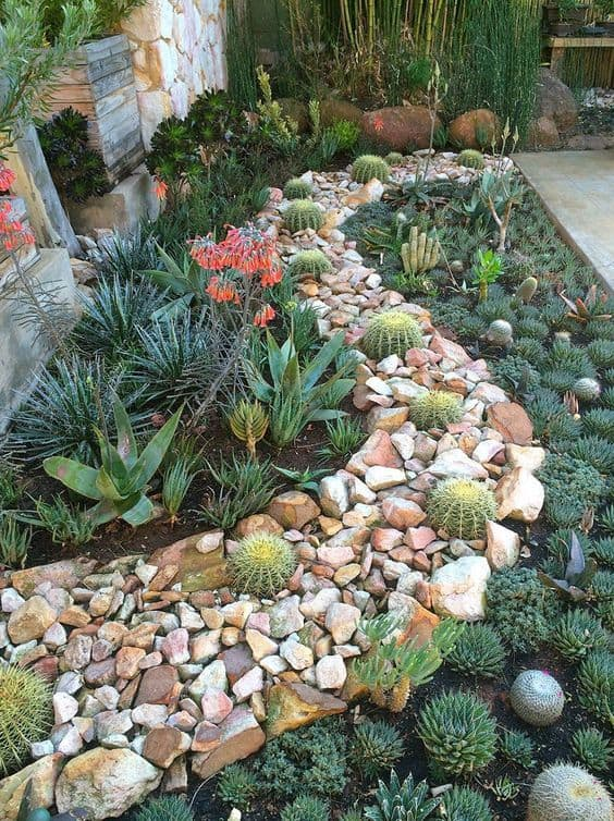 a pathway rocks  surrounded by a garden of succulent