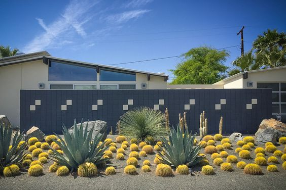 Contemporary Desert Landscaping planted with Various Kind of Cactus Plants on the Front Yard with Contemporary Wall Fence