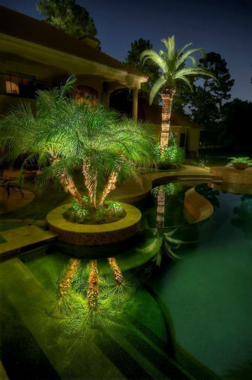lighting into the palms around the pool