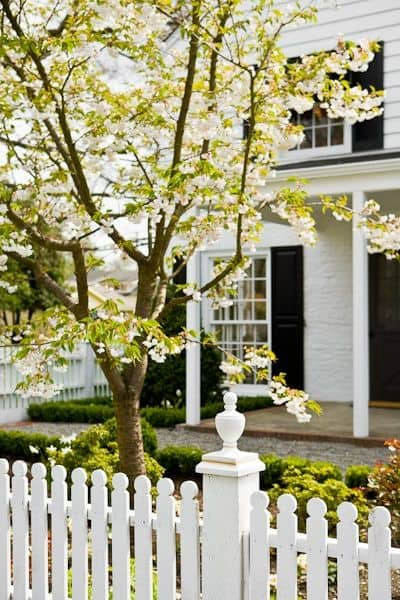 white house with black windows and white picket fence with rounded top edges