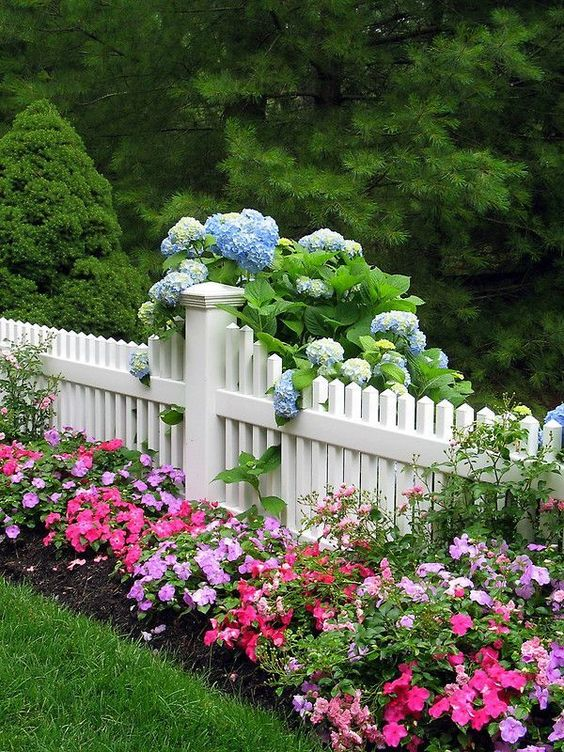 White picket surrounded by flowering plants