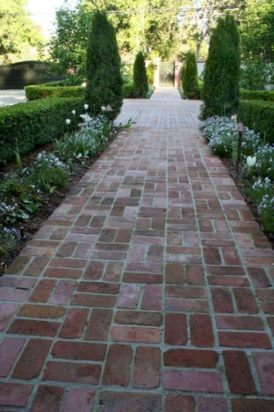 clay bricks pathway and white flowering plants on both sides  #walkway #Hardscaping #backyardLandscaping #backyardLandscapingIdeas #landscaping #cheapLandscapingIdeas #backyard #landscaping #curbAppeal  #brickWalkway
