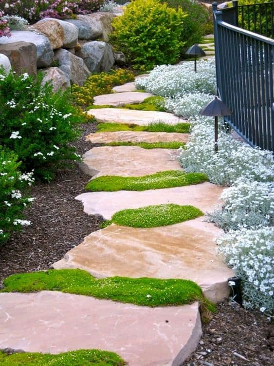 rocks as the steps for the walkway and there are grasses in between the rocks  #walkway #Hardscaping #backyardLandscaping #backyardLandscapingIdeas #landscaping #cheapLandscapingIdeas #backyard #landscaping #curbAppeal  #rocks  #steppingStones