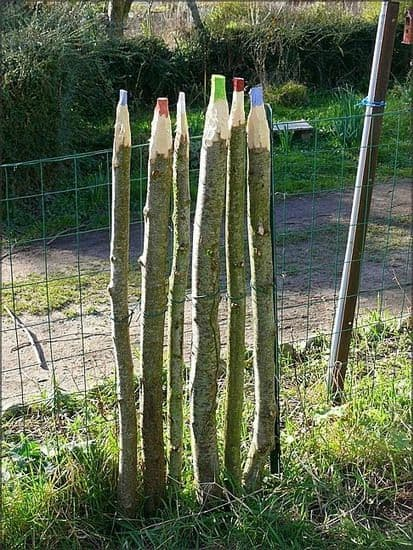 creatively carved wood fence into a colored pencil
