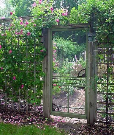 plants around a garden gate with a door structure #fenceGate #fence #gardenfence #gardenfenceideas #privacyfenceideas #privacyfence #backyardLandscaping #backyardLandscapingIdeas #landscaping #gardenfence #gardenfenceideas #privacyfenceideas #flowers #arbor #vines