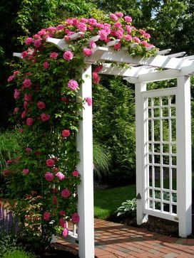 white flower arbor  #arbor #backyardLandscaping #backyardLandscapingIdeas #landscaping #cheapLandscapingIdeas #backyard #landscaping #pergola  #flowers #vines
