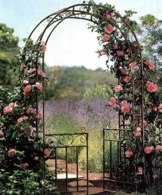 arbor with a rustic metal design surrounded with pink roses #arbor #backyardLandscaping #backyardLandscapingIdeas #landscaping #cheapLandscapingIdeas  #flowers #pergola #vines