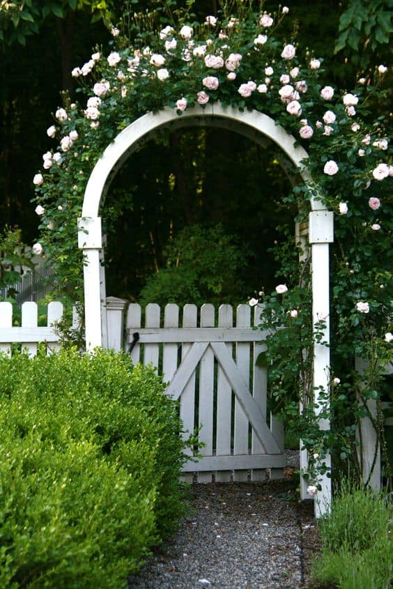 garden white gate with an arch #fenceGate #fence #gardenfence #gardenfenceideas #privacyfenceideas #privacyfence #backyardLandscaping #backyardLandscapingIdeas #landscaping #gardenfence #gardenfenceideas #privacyfenceideas #flowers #arbor