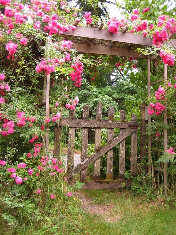 rustic flower arbor  #flowers #vines  #arbor #backyardLandscaping #backyardLandscapingIdeas #landscaping #cheapLandscapingIdeas #backyard #landscaping #pergola