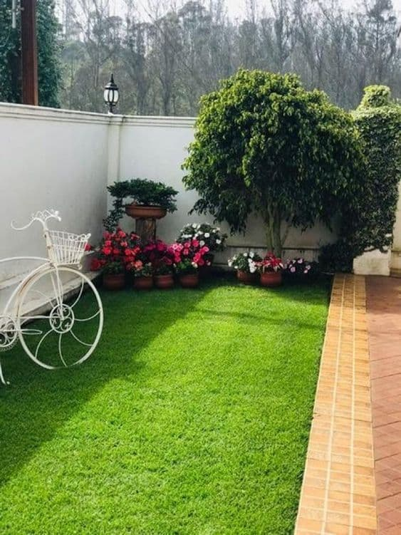 simple garden with a few trees, a bike and flower pots  #grass #lawn #backyardLandscaping #backyardLandscapingIdeas #landscaping #cheapLandscapingIdeas #backyard #landscaping #curbAppeal
