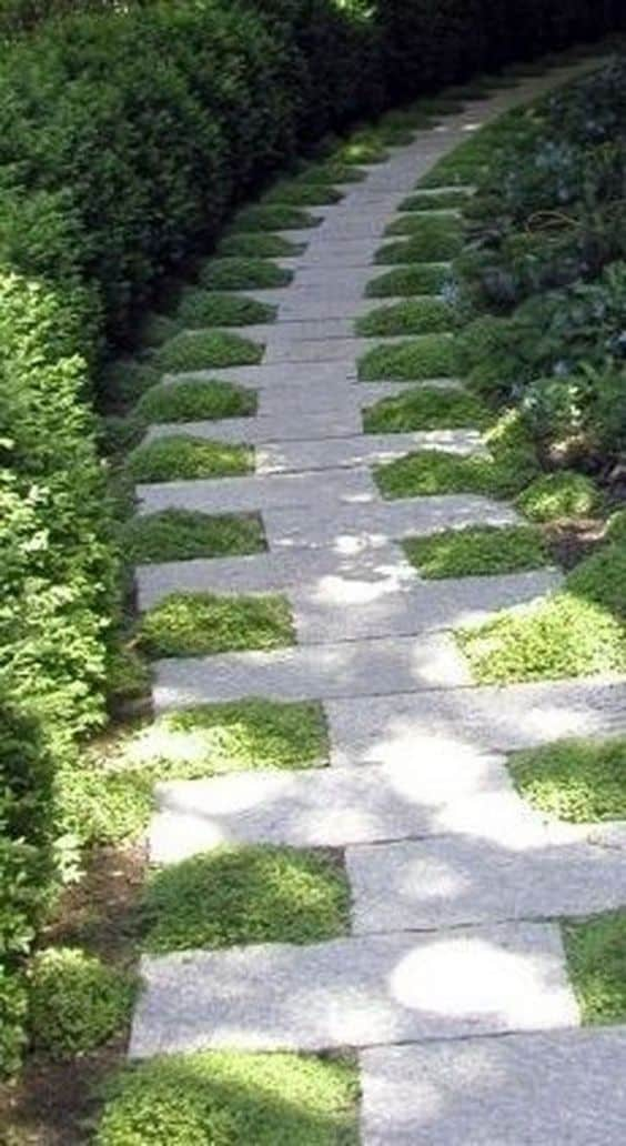 Asymmetrical and staggered stepping stones with a natural lawn  #steppingStones #Hardscaping #walkway #backyardLandscaping #backyardLandscapingIdeas #landscaping #cheapLandscapingIdeas #backyard #landscaping  #curbAppeal