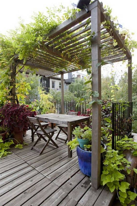 combo of climbing plants and pergola shade gives #vines #pergola #backyardLandscaping #backyardLandscapingIdeas #landscaping #cheapLandscapingIdeas #landscape #pavilion #curbAppeal #outdoorliving #outdoorShade