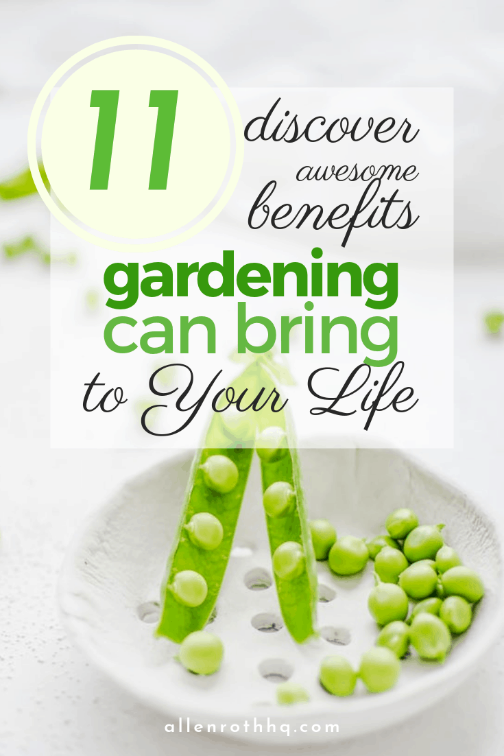 What is the importance of Gardening in Our life? It's good for our soul and body #garden #gardening #gardenTips #gardencare #backyardGarden #vegetablegarden
