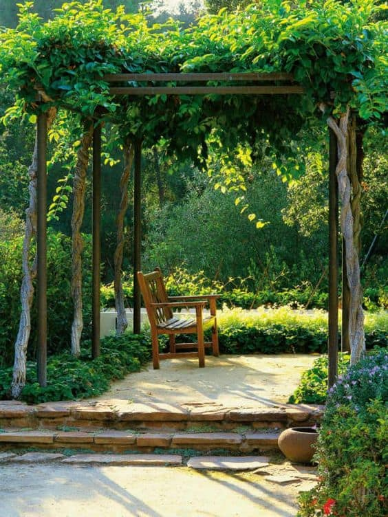 tall trees, the leaves and branches act like climbing plants for a pergola #vines #pergola #backyardLandscaping #backyardLandscapingIdeas #landscaping #cheapLandscapingIdeas #landscape #pavilion #curbAppeal #outdoorliving #outdoorShade