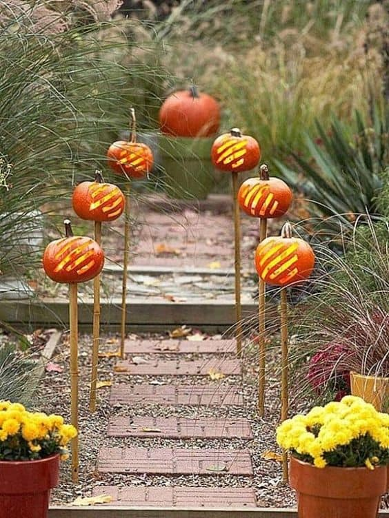 pumpkin laterns #walkway #pathway #fall #autumn #garden #backyardLandscaping #backyardLandscapingIdeas #landscaping #cheapLandscapingIdeas #landscape #outdoorSpace #backyard #backyardDecor #outdoordecor #backyardLighting #outdoorLights #pathlights #pumpkins