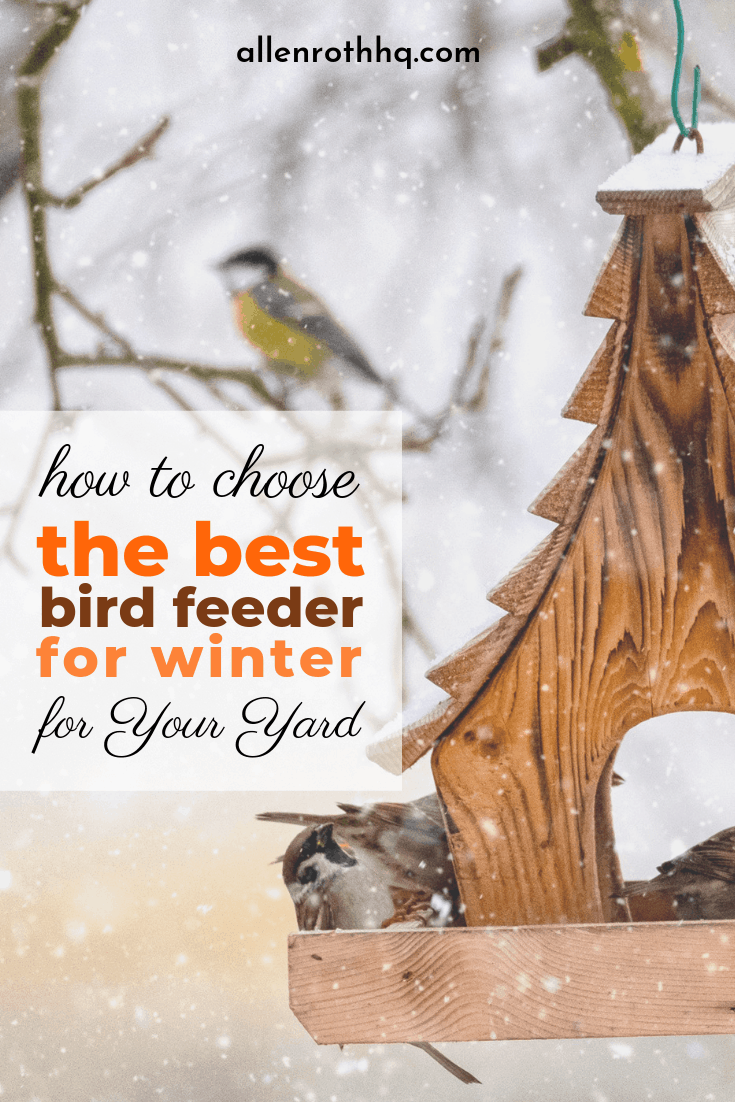 best bird feeders for winter 2