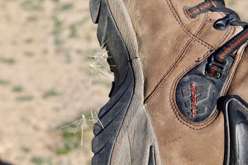 Cactus needles stuck on boots