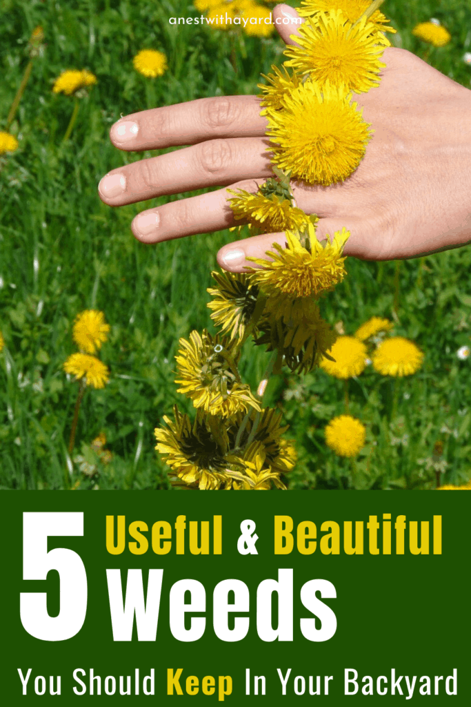5 weeds you should keep