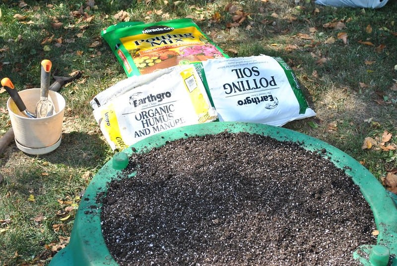 Soil potting mix for growing potatoes indoors