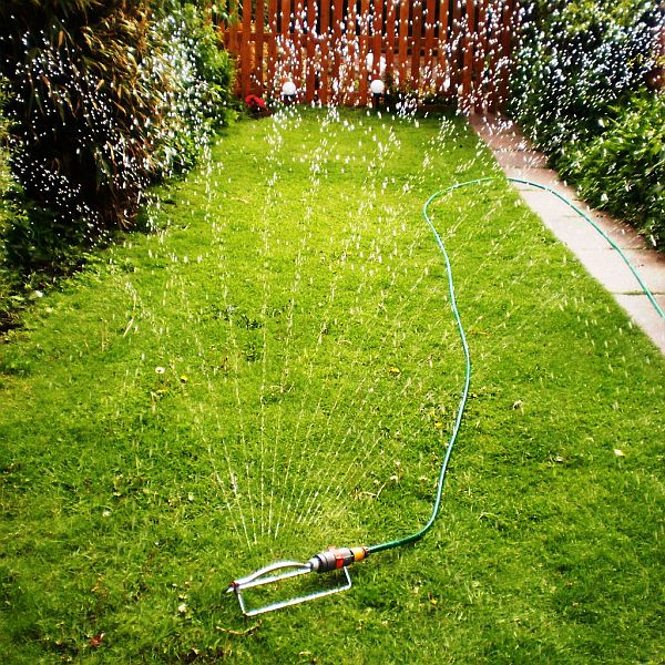 Garden hose spraying water