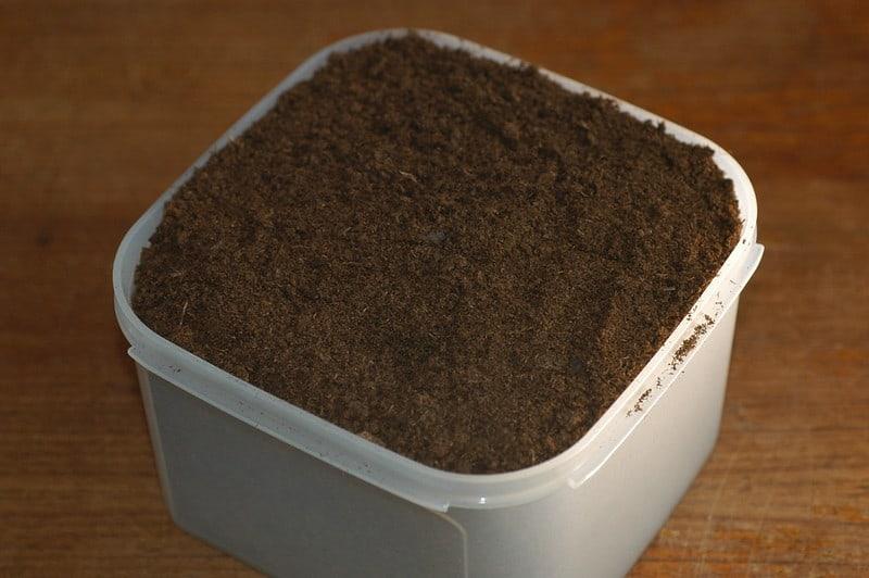 A moist peat moss