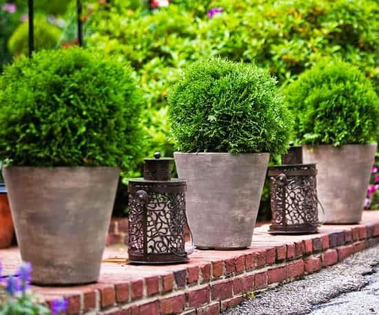 Allen Roth Lighting bhg lanterns
