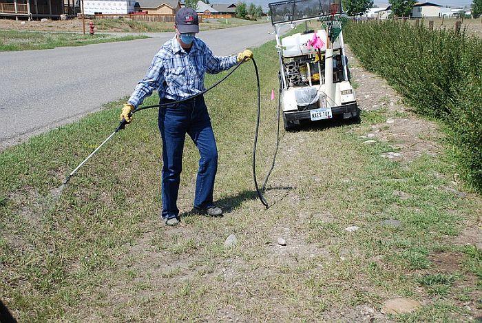 Applying Post-emergent herbicide to weeds