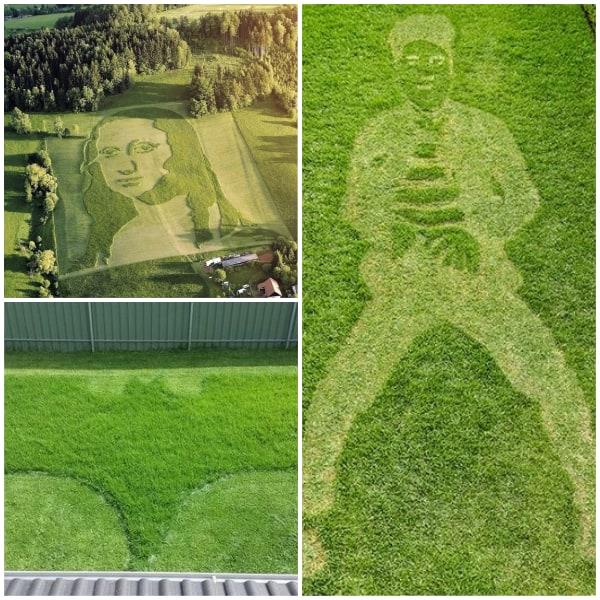 Artistic Lawn Pattern