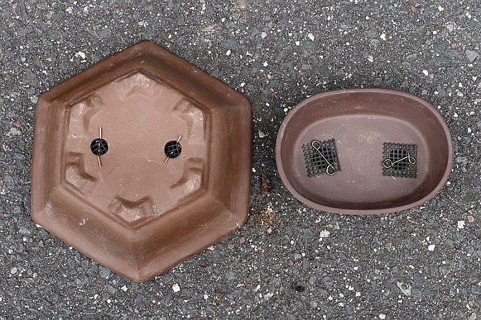 Bonsai pots with mesh over drainage holes