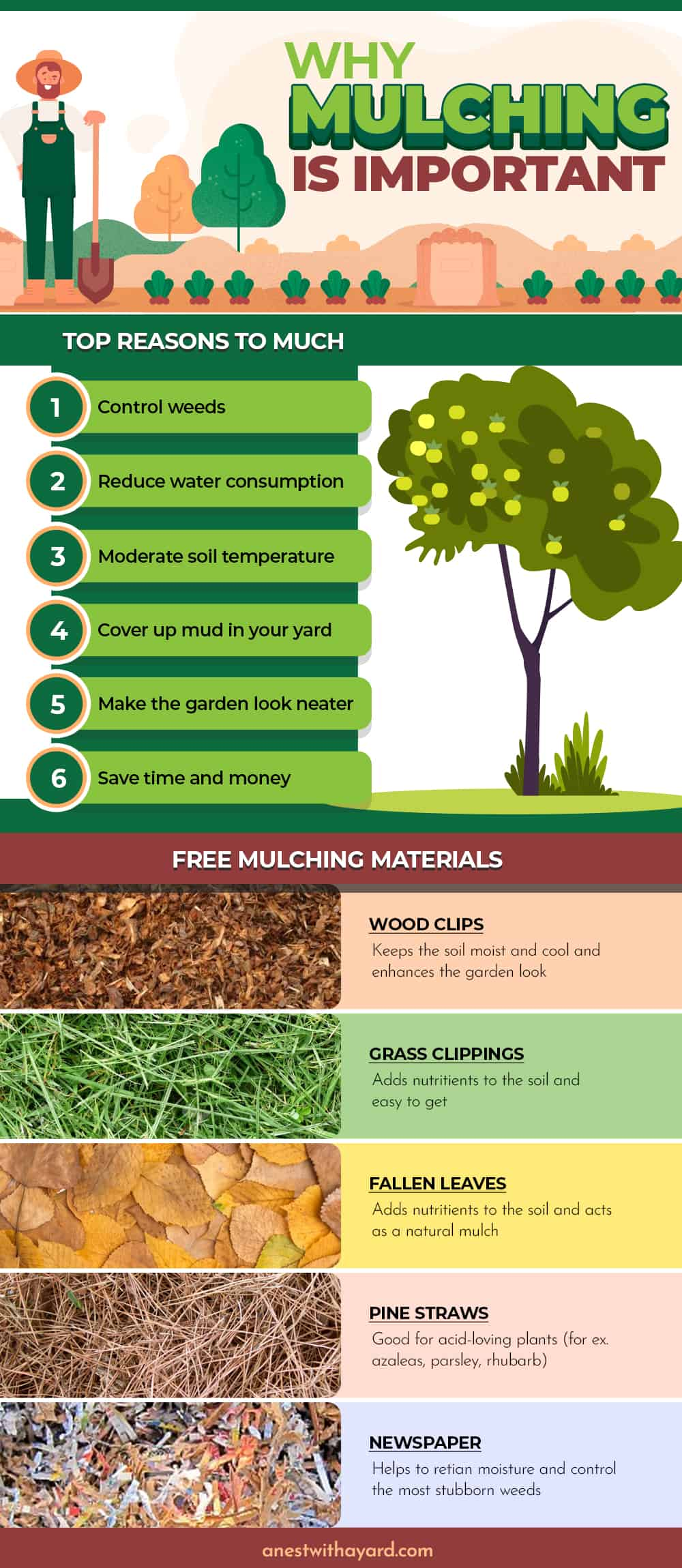 Why mulching is important #mulch #landscaping #backyard #landscape