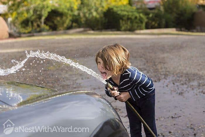 Is It Safe To Drink From A Garden Hose? Here's What You Need To Know