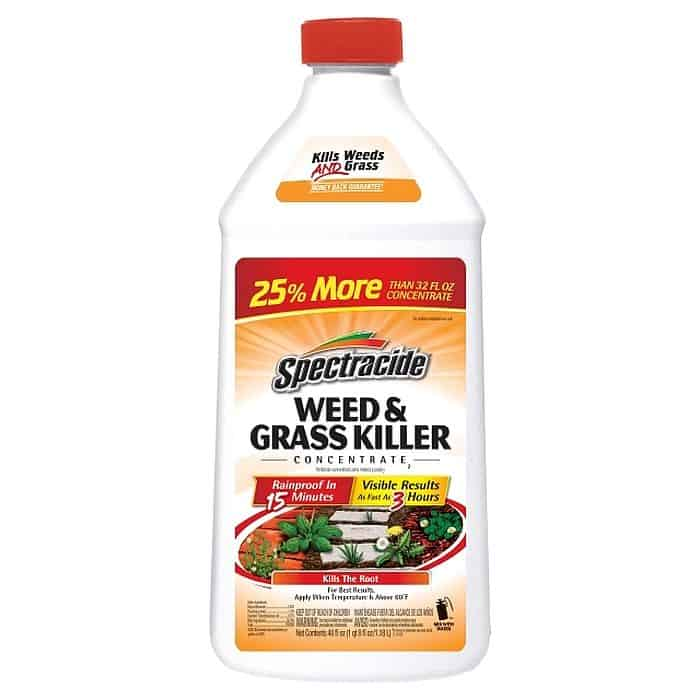 A Bottle of Spectracide Weed and Grass Killer