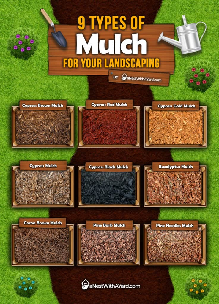 Infographic: 9 Types Of Mulch For Your Landscaping