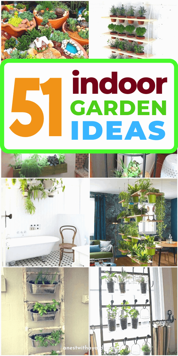 Some of the awesome indoor garden ideas  for your home, apartment, living room, and kitchen #indoorGarden #indoorGardenIdeas #indoorgardendesigns #indoorgardenapartment #apartmentindoorgarden #apartmentgardening