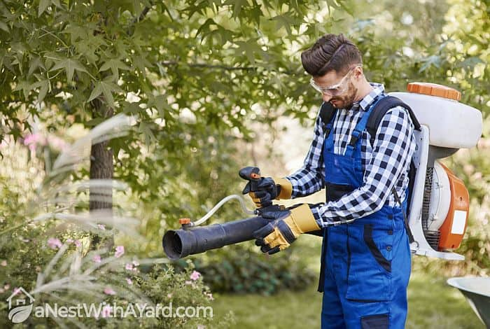 Leaf Blower CFM Vs MPH: Which One Is More Important?