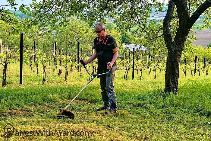 A man cutting grass with brush cutter
