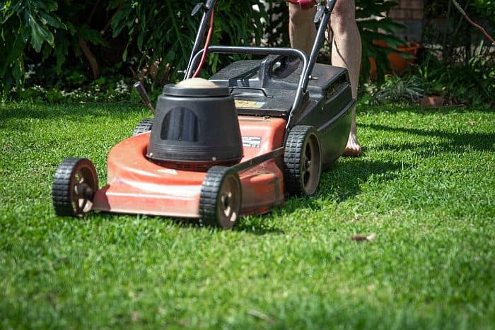 red lawn mower on a grass lawn